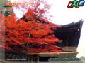 Nikkosan Rinno-ji Temple