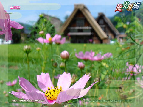 白川郷の画像 p1_8